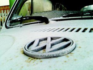 car bugs